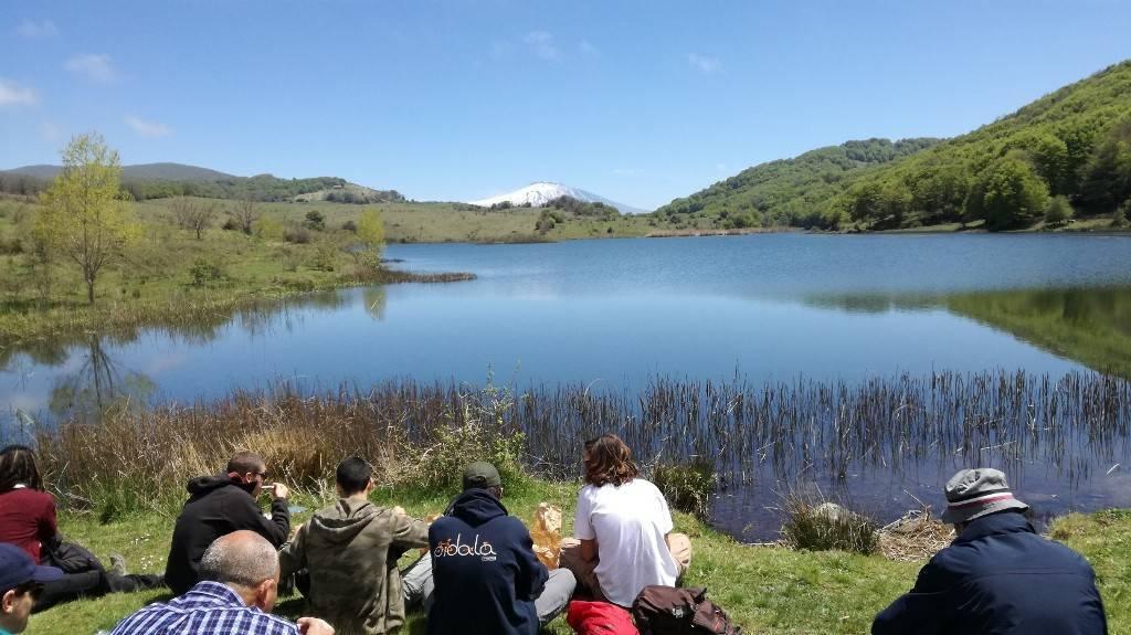Escursione Nel Parco Dei Nebrodi Bosco Di Mangalaviti E Lago Biviere